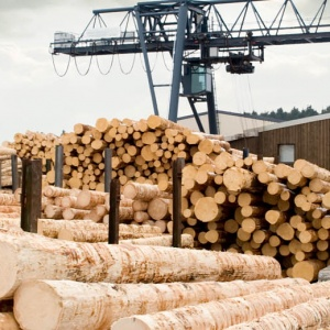 Xylene – Boosting Trust in Timber